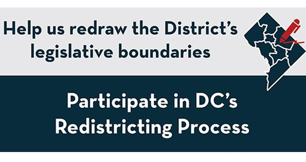 Image for Redistricting