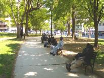 Image of Center City Urban Parks Strategy - downtown DC summertime park scene